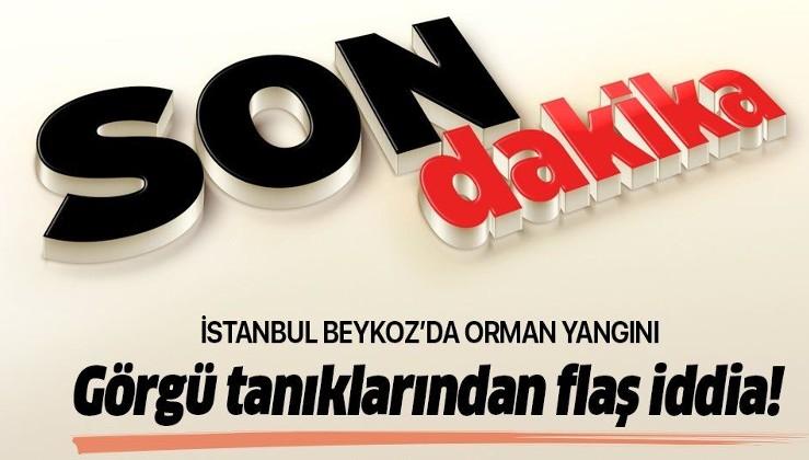 İstanbul Beykoz'da orman yangını! .