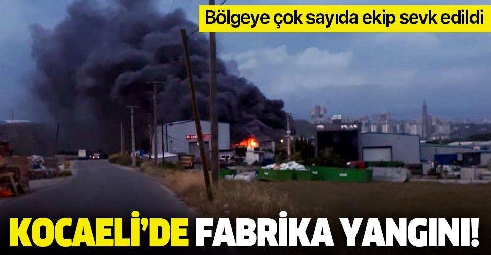 Son dakika: Kocaeli Gebze'de fabrika yangını
