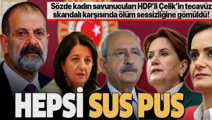 HDP'li vekil Tuma Çelik'in tecavüz skandalı karşısında CHP ve muhalif isimler ölüm sessizliğine gömüldü