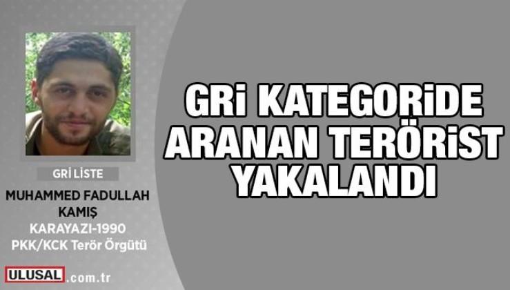 Gri kategoride aranan terörist Muhammet Fadullah Kamış yakalandı