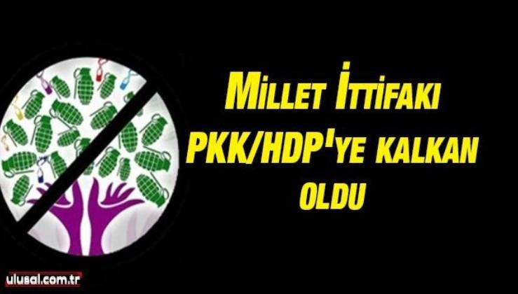 Millet İttifakı PKK/HDP'ye kalkan oldu