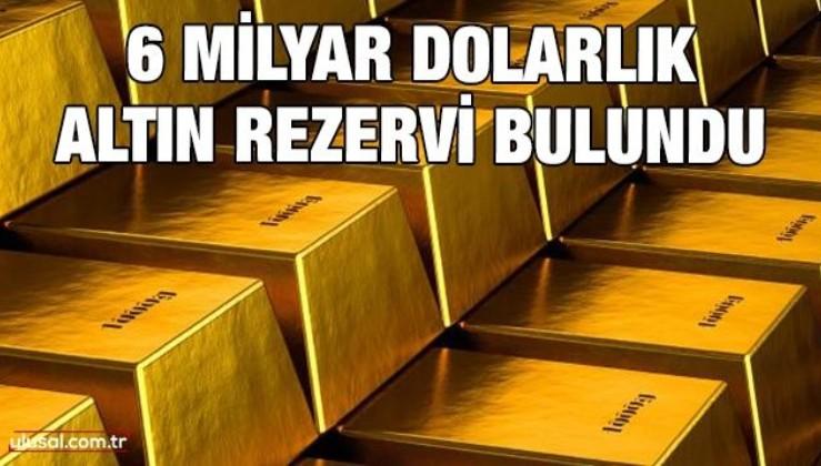 6 milyar dolarlık altın rezervi bulundu