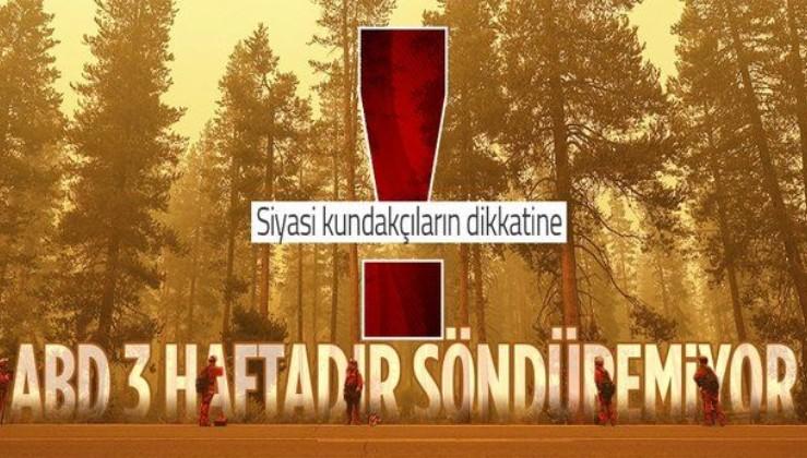 Dünya orman yangınlarıyla mücadele ediyor! İşte ülke ülke son durum...