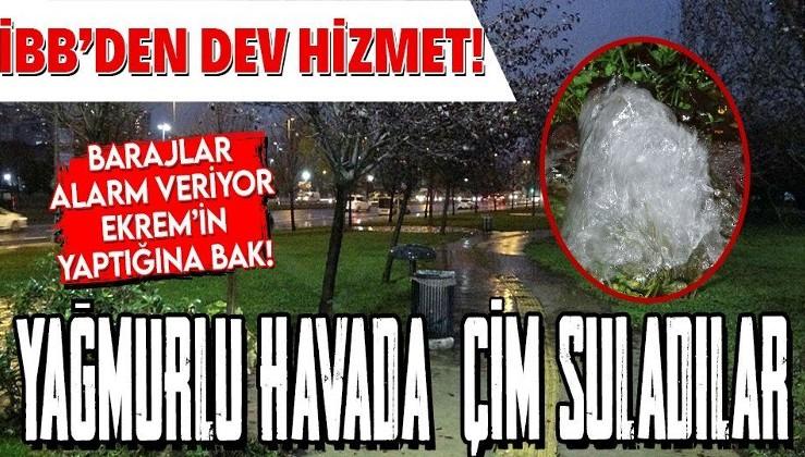 İBB'den dev hizmet: Yağmurlu havada çimen sulama! Vatandaşlardan tepki yağdı!