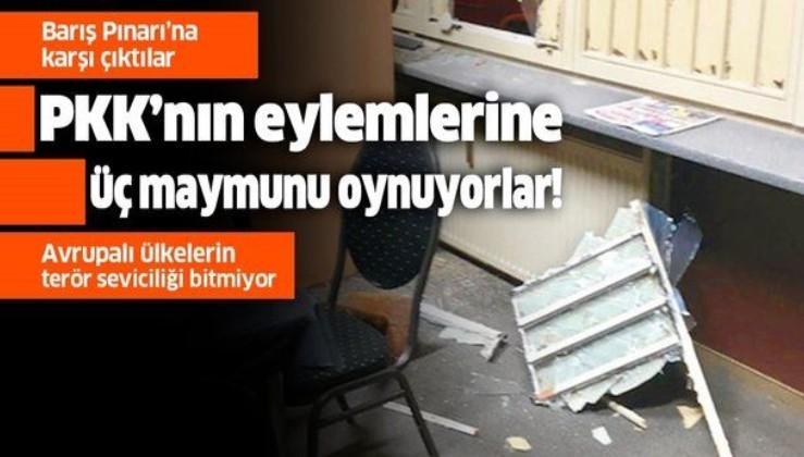 Barış Pınarı Harekatı'na karşı olan Avrupa ülkeleri terör örgütü PKK'nın eylemlerini görmezden geldiler!.