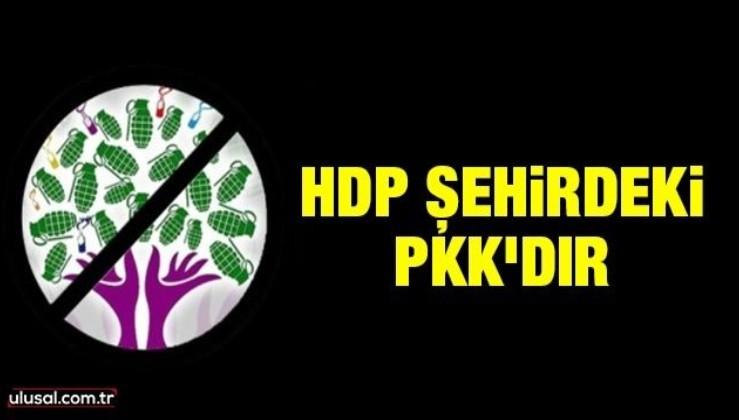 HDP şehirdeki PKK'dır