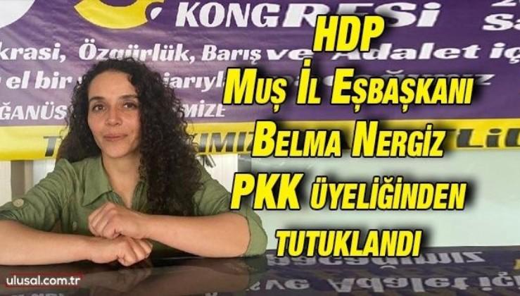 HDP Muş İl Eşbaşkanı Belma Nergiz PKK üyeliğinden tutuklandı