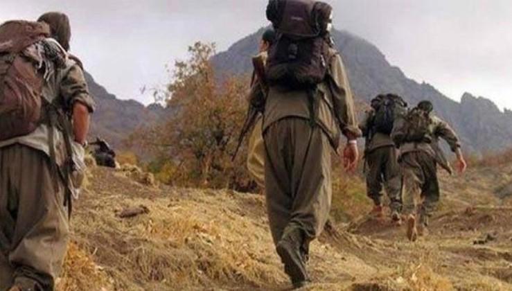PKK'da çözülmeler devam ediyor! Van'da 2 terörist güvenlik güçlerine teslim oldu