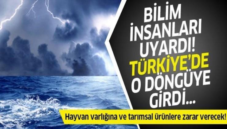 Son dakika: Bilim insanından korkutan uyarı! Türkiye de o döngüye girdi...