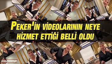 Sedat Peker'in videolarının neye hizmet ettiği belli oldu