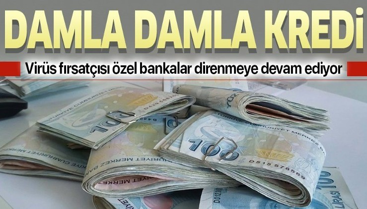 Virüs fırsatçısı özel bankalar direnmeye devam ediyor! Özel bankalardan damla damla kredi