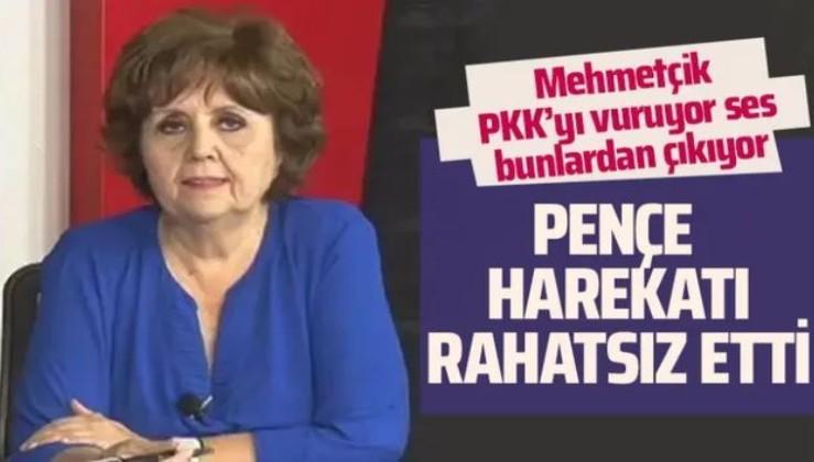 Ayşenur Arslan'dan skandal Pençe Harekatı yorumu! Utanıyorum