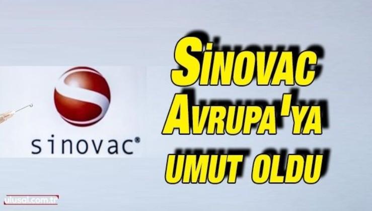 Sinovac Avrupa'ya umut oldu