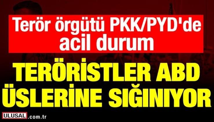 Terör örgütü PKK/PYD'de acil durum! Teröristler ABD üslerine sığınıyor