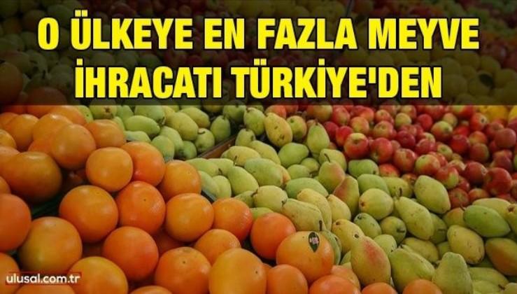 O ülkeye en fazla meyve ihracatı Türkiye'den