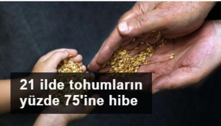 21 ilde tohumların yüzde 75'ine hibe