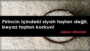 Güneş Erkul: Şeytan ayrıntıda gizlidir. Ben pirincin içindeki siyah taştan korkmam, beyaz taştan korkarım.