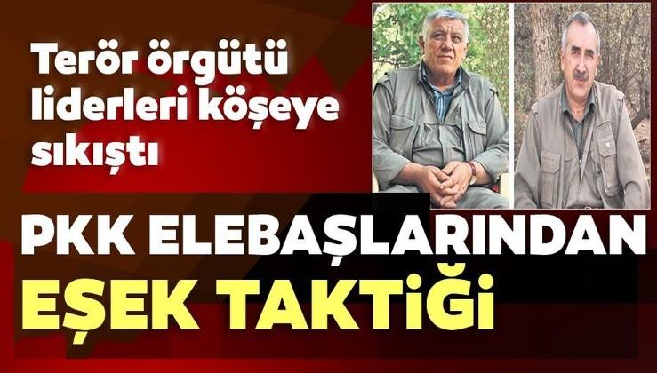 PKK iyice köşeye sıkıştı! Elebaşıları eşekle yer değiştiriyor