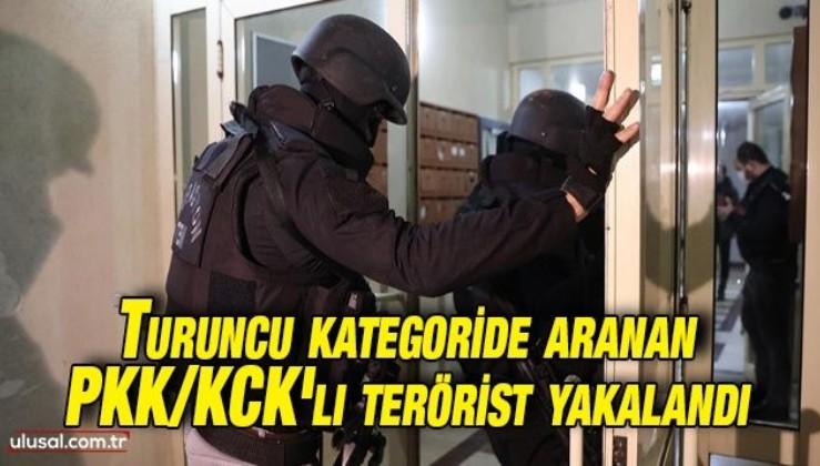 Turuncu kategoride aranan PKK/KCK'lı terörist yakalandı