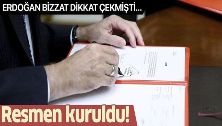 Erdoğan o gerçeğe dikkat çekmişti... 'Fikri iktidar' için Yeni Sanat Vakfı kuruldu