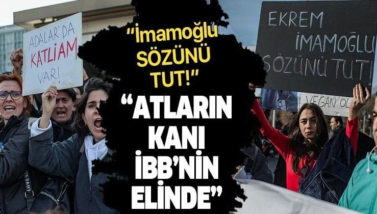 """İBB önünde protesto: """"Atların kanları İBB'nin elinde!""""."""