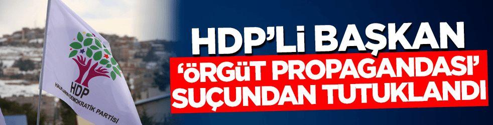 HDP'li başkan 'örgüt propagandası' suçundan tutuklandı