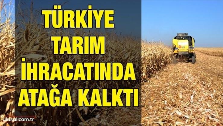 Türkiye tarım ihracatında atağa kalktı
