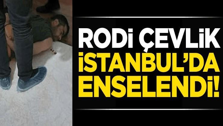 Rodi Çevlik İstanbul'da enselendi!