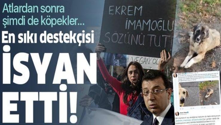 """İmamoğlu'nun en sıkı destekçisiydi! """"İMAMOĞLU BENİM İÇİN BİTMİŞTİR""""."""