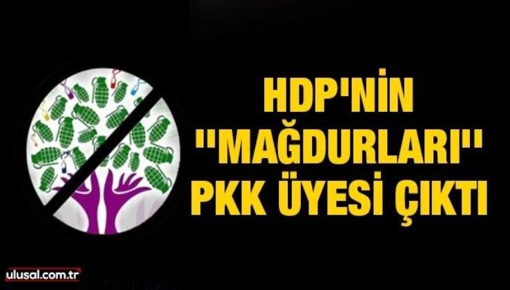 HDP'nin ''mağdurları'' PKK üyesi çıktı