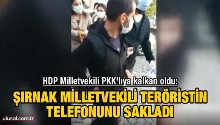 HDP Milletvekili PKK'lıya kalkan oldu: Şırnak Milletvekili teröristin telefonunu sakladı