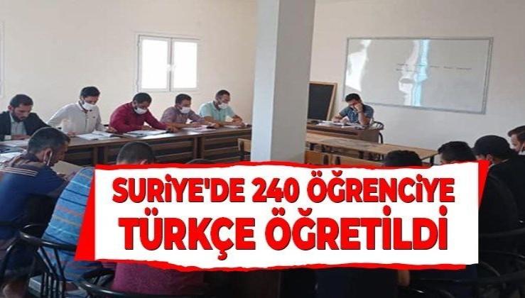 Yunus Emre Enstitüsü, Suriye'de 240 öğrenciye Türkçe öğretti