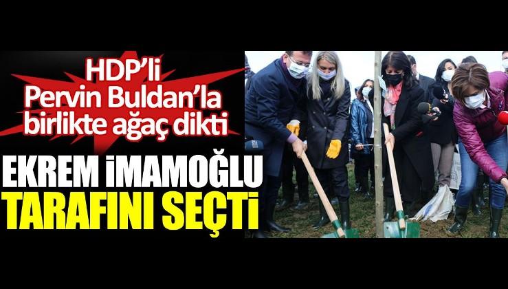 Ekrem İmamoğlu HDPKK'lı Pervin Buldan'la birlikte ağaç dikti