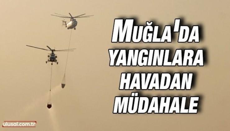 Muğla'da yangınlara havadan müdahale ediliyor