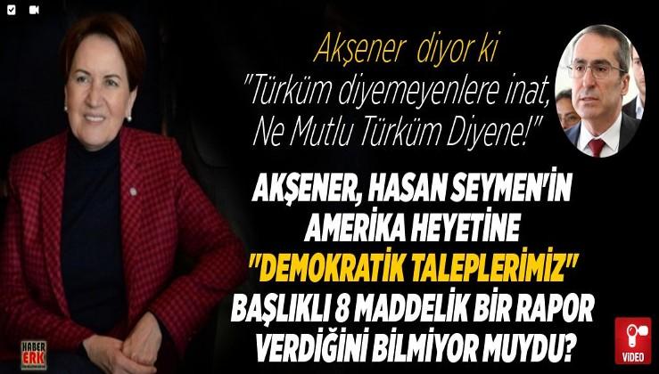"""Akşener, Hasan Seymen'in Amerika heyetine """"Demokratik taleplerimiz"""" başlıklı 8 maddelik bir rapor verdiğini bilmiyor muydu?"""