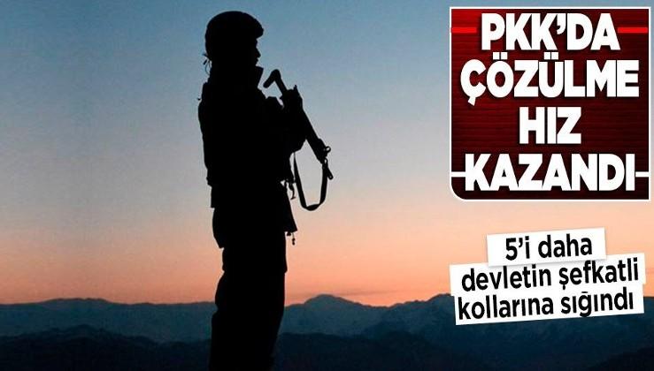 Son dakika: PKK'da çözülme hız kazandı! 5 terörist daha teslim oldu
