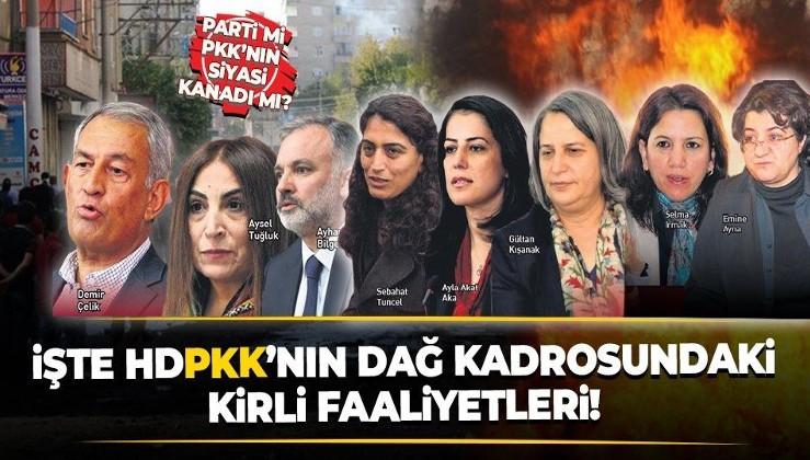 HDP'lilerin dağ kadrosundaki kirli faaliyetleri ortaya çıktı!