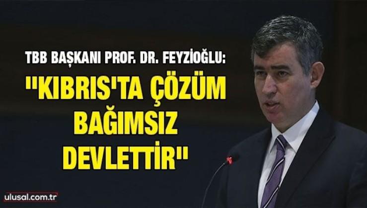 """TBB Başkanı Prof. Dr. Feyzioğlu: """"Kıbrıs'ta çözüm bağımsız devlettir"""""""