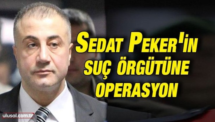 Sedat Peker'in suç örgütüne operasyon