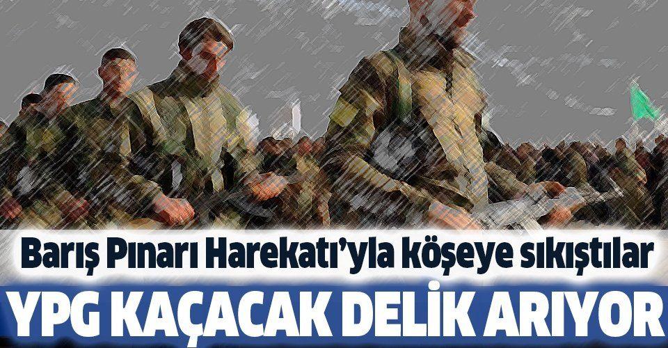 Barış Pınarı Harekatı'yla köşeye sıkışan teröristler kaçacak delik arıyor.