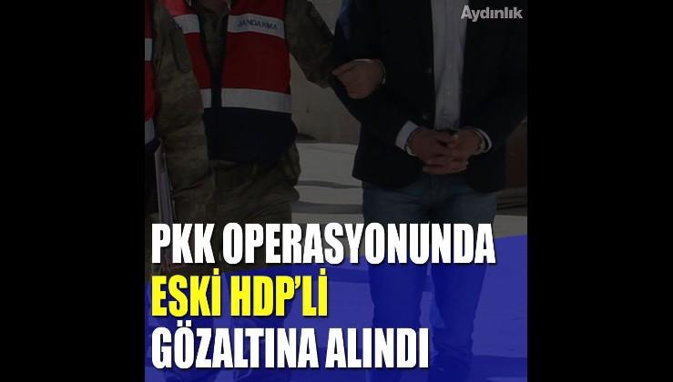 PKK operasyonunda eski HDP İlçe Başkanı gözaltına alındı