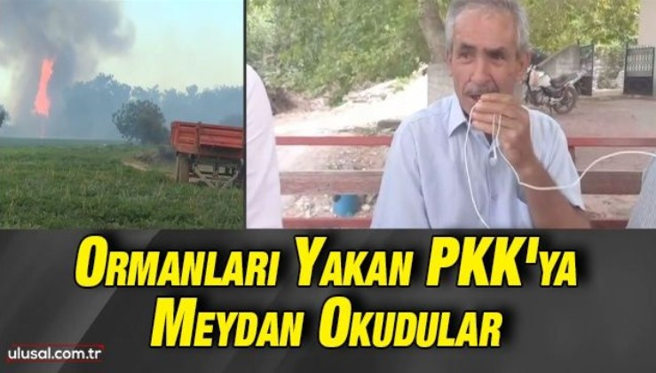Ormanları yakan PKK'ya meydan okudular