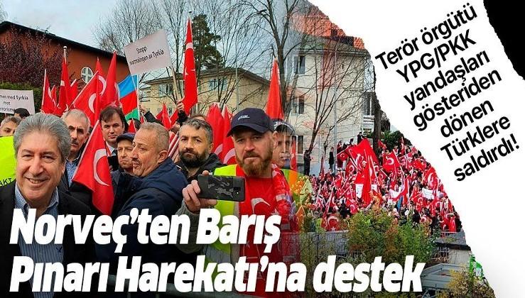 Norveç'te Barış Pınarı Harekatı'na destek gösterisi.