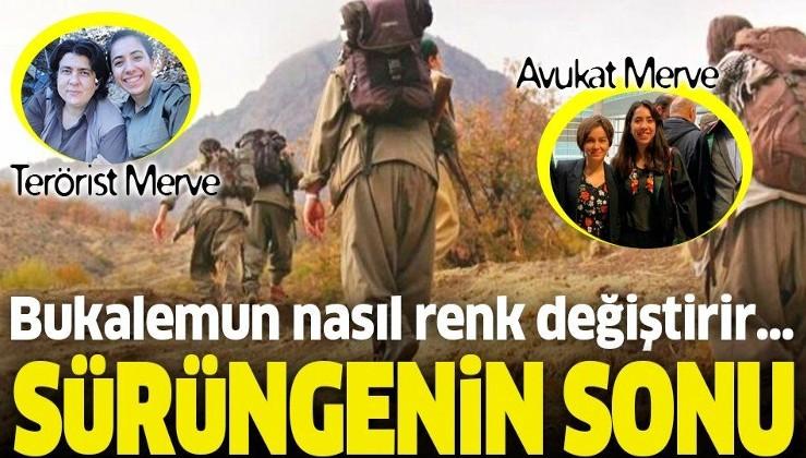 İmha edilen PKK'lı terörist Doktor Amara'nın sağ kolu olan avukat Merve Nur Doğan tutuklandı