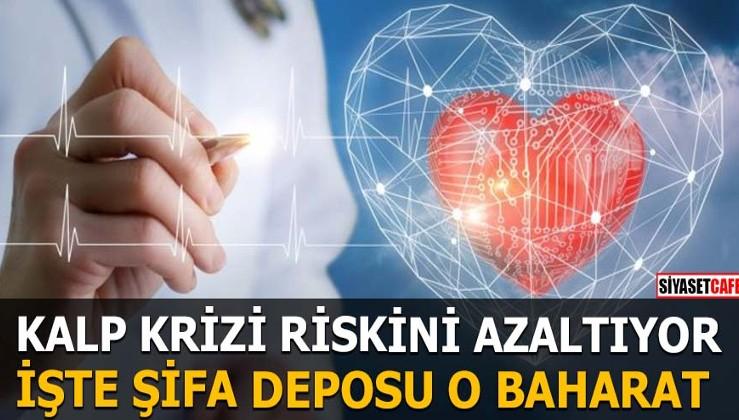 Kalp krizi riskini azaltıyor İşte şifa deposu o baharat