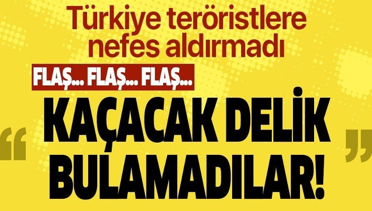 PKK/FETÖ virüsleriyle de mücadele sürüyor: 89 terörist etkisiz hale getirildi.