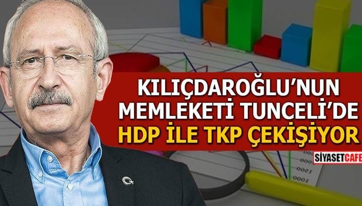 Kılıçdaroğlu'nun memleketi Tunceli'de HDP ile TKP çekişiyor
