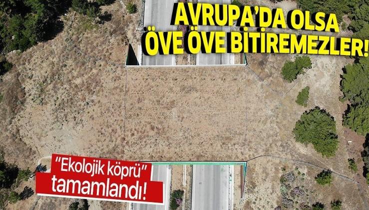 """İzmir-Çeşme Otoyolu'nda yaban hayvanlarını korumak için planlanan """"ekolojik köprü"""" tamamlandı"""