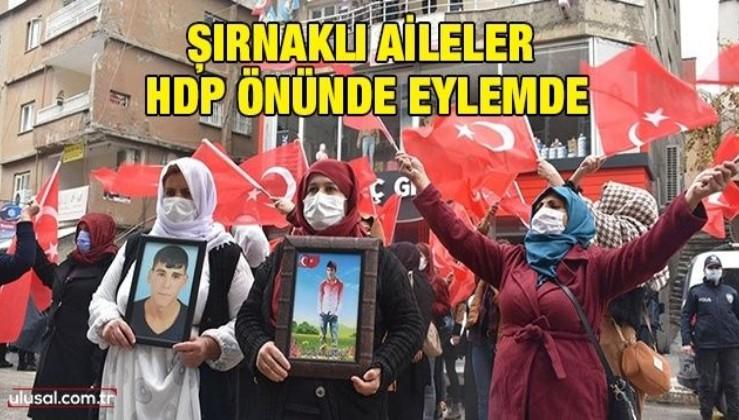 Şırnaklı aileler HDP önünde eylemde