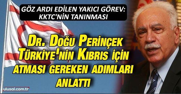 Dr. Doğu Perinçek, Türkiye'nin Kıbrıs için atması gereken adımları anlattı